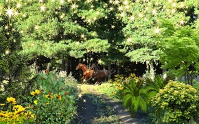 Picture summer, dream, nature, fantasy, taiga, Horses forest