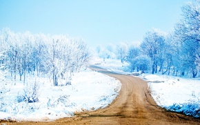 Picture Road, Trees, Snow, Snow Way, Snow Path