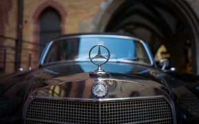 Picture the hood, grille, Mercedes-Benz, icon