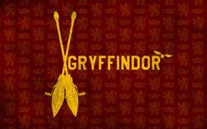 Picture Harry Potter, broom, Harry Potter, Gryffindor, Gryffindor, Snitch