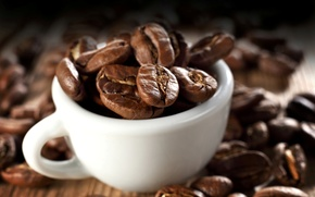 Picture macro, background, coffee, grain, Cup, white