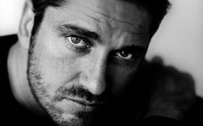 Picture eyes, look, face, photo, black and white, portrait, actor, bristles, monochrome, Gerard Butler, Gerard Butler