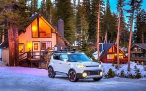 Picture Winter, Snow, White, Kia, Forest, 2015, Trailster, Off road, Kia off road, KIA Trailster