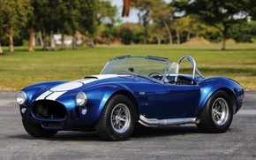 Picture Shelby, Ford, Shelby, 1967, Cobra, 427, S/C, MkIII, AC Cars