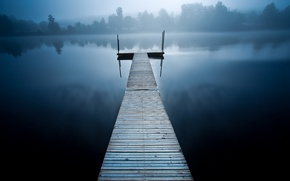 Picture trees, wood, lake, fog, houses, pier, cold