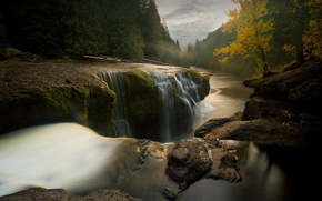 Picture trees, landscape, river, stones, the flow of water
