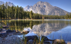 Picture forest, the sky, water, mountains, reflection, mountain