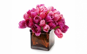 Picture flowers, bouquet, tulips, vase, fresh, flowers, tulips, purple, bouquet