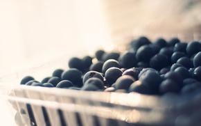 Picture berries, blueberries, bokeh