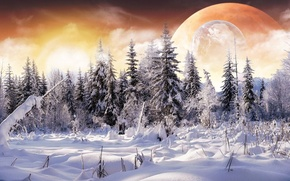 Picture winter, forest, snow, collage, planet