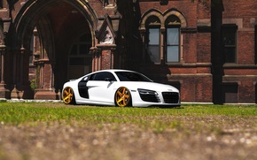 Picture audi, White, Gold, Wheels, Before, Garde, R8