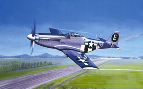 Picture art, painting, aviation, P-51 MUSTANG