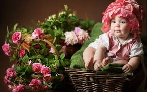 Picture flowers, children, roses, baby, girl, child, basket, Anna Levankova