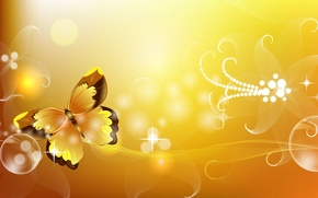 Picture flowers, butterfly, lights
