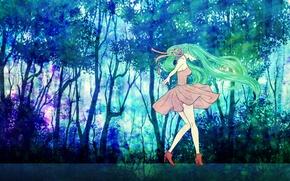 Picture Vocaloid, Vocaloid, Hatsune miku, Hatsune Miku