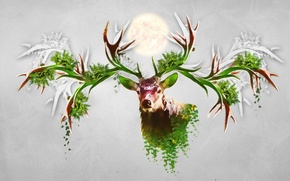 Picture abstraction, animal, deer, horns