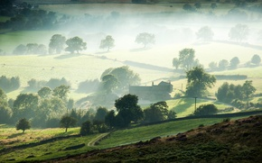 Picture trees, fog, morning, valley, farm