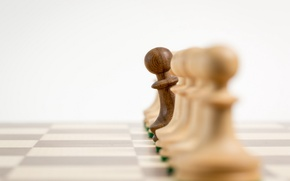 Picture macro, chess, pawns