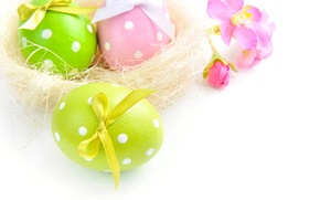 Picture photo, Three, Easter, Eggs, Holiday, Bow