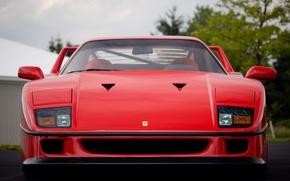 Picture Red, Auto, Machine, Ferrari, Ferrari, F40, Supercar, Supercar, Ferrari F40, F 40, Ferrari F 40, …