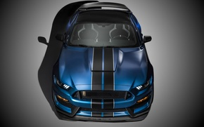 Picture Mustang, Ford, Shelby, Muscle, Car, Front, 2015, GT350R