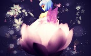 Picture flowers, wings, Lotus, girl, Art, blue hair, Shakugan no Shana, Hecate, Noizi Ito