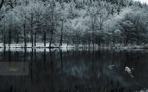 Wallpaper snow, lake, cold, forest