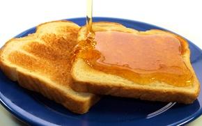 Wallpaper Breakfast, honey, plate, bread, toast