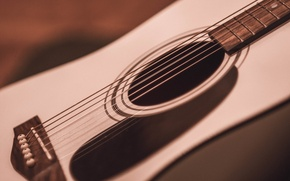 Picture music, guitar, strings, tool, Marco, ukulele