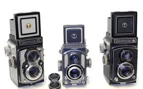 Picture macro, camera, Yashica