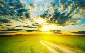 Picture road, field, the sky, the sun, clouds, landscape, horizon, meadow, green, warm, Nature scenic, field …