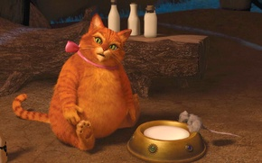Picture cat, red, bow, Shrek forever, fat, lupul
