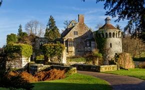 Picture trees, castle, England, track, ditch, Scotney Castle