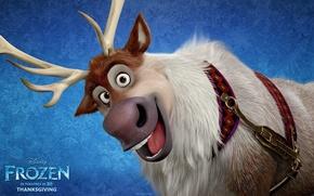 Picture cartoon, deer, Frozen, Disney, Sven, Sven, Cold heart
