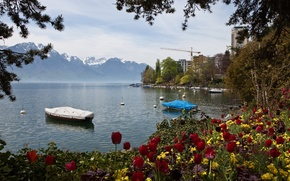 Picture mountains, nature, lake, photo, Switzerland, tulips, Montreux