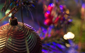 Picture macro, holiday, toy, tree