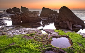 Picture sea, the sky, algae, sunset, stones, rocks