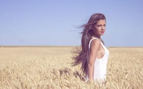 Picture girl, dress, lips, hair, wind, wheat, wheat field, sunny, direct gaze, farmland