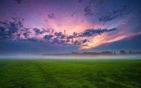 Picture field, the sky, grass, clouds, trees, sunset, clouds, fog, the evening, Germany, haze, blue