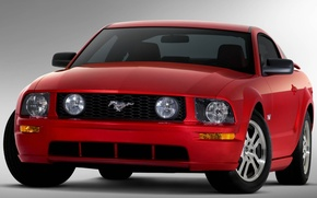 Picture horse, Mustang, red