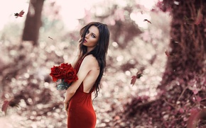 Picture Alessandro Di Cicco, bouquet, red dress, leaves, Red Rose, makeup, girl, autumn, red roses
