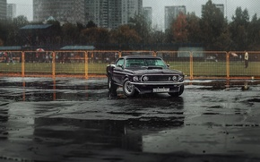 Picture trees, people, rain, building, Mustang, Ford, mirror, puddle, Parking, apartments, Mach 1