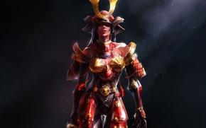 Picture girl, art, samurai, armor