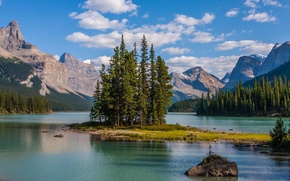 Picture trees, mountains, lake, island, Canada, Albert, Maligne Lake, Jasper national Park