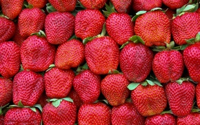 Picture green, red, pattern, strawberries