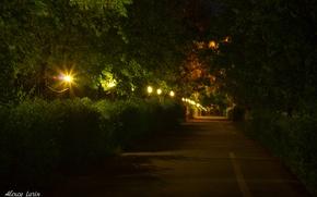Picture night, lights, track, walk