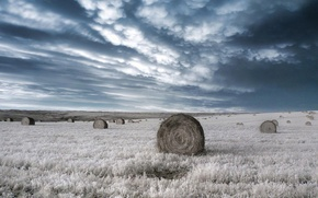 Picture clouds, Field, infrared, bales