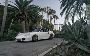Picture Porsche, Turbo, 996, Rotiform, Accuair, Bagsbyboden