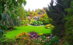 Picture greens, grass, trees, flowers, design, garden, Canada, Vancouver, the bushes, Queen Elizabeth Garden