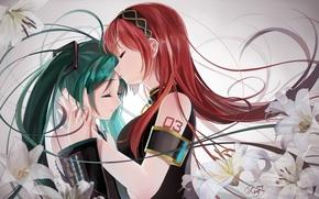 Picture flowers, girls, kiss, anime, art, vocaloid, hatsune miku, megurine luka, okingjo
